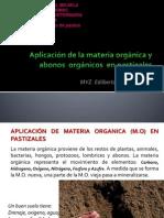 2.- Materia Organica