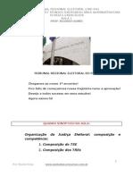 Aula1 Eleitoral Pac TRE PA 66517
