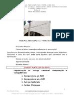 Aula2 Eleitoral Pac TRE PA 66519