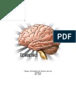 Enfermedad Del Sistema Nervioso - Epilepsia