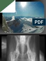 Basic in Radiologie