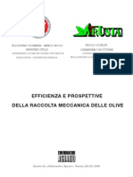 Raccolta Mecc Olive
