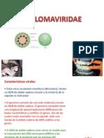 papilomaviridae.pptx