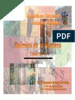 Quimica de La Madera-1