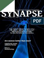 Synapse 1