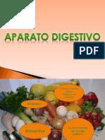Aparato digestivo(1)