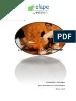 Trabalho de Massagem Fisioestetica Ayurveda