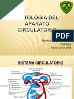 Histología del aparato circulatorio.pptx
