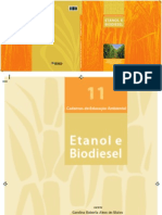11 Etanol Biodiesel 2012