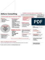 2bsure Consulting Brochure