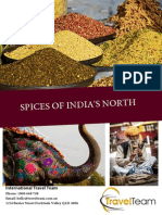 Spices of India - Travel Team