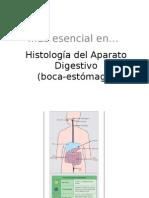 Histología del Aparato Digestivo