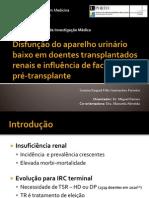 Disfunção do Aparelho Urinário Baixo em Doentes Transplantados Renais e Influência de Factores Pré-transplante
