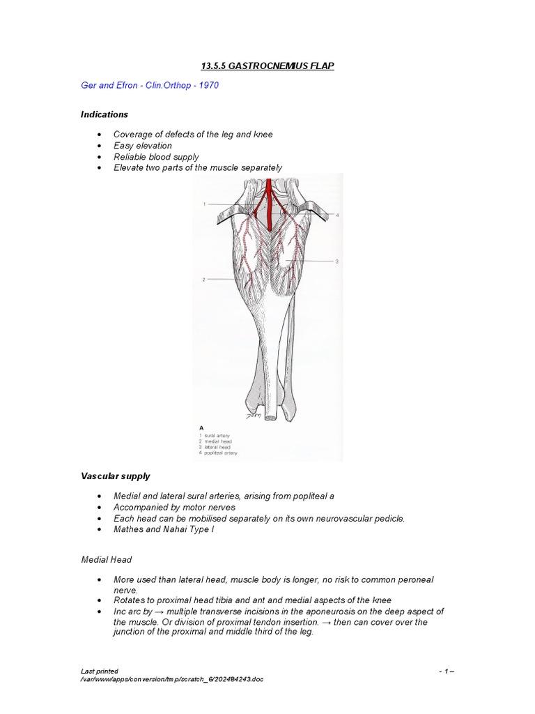 13.5.5 Gastrocnemius Flap | Knee | Soft Tissue