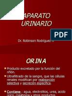 H. APARATO URINARIO. E.(01.09.09)
