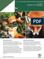IPA-Fox-PA13.pdf