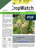 Adelaide Hills Crop Watch 180909