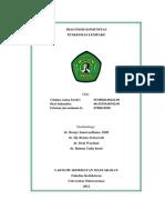 Diagnosis Komunitas.docx