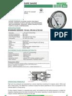 Bg-differential Pressure Gauge