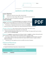 chemical reactions and enzymes lesson summary
