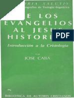 De Los Evangelios Al Jesus Historico Jose Caba