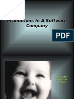 Promotions in a Software Company