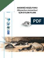 Akdeniz Keşiş Foku için eylem planı