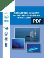 Akdeniz Yunus Ve Balinaların Korunması İçin Eylem Plani