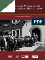 Emif Sur 2009 Publicacion