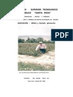 Cultivo de Pastos en Secano