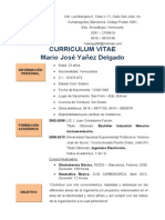 Mario Yañez Resumen Curricular