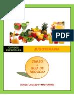 RecetasDeJugoterapia-GuiaDeNegocio-1