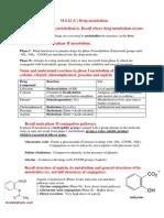 M9.22- Drug Metabolism