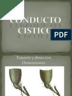 Conducto cistico
