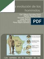 (4) La Evolucion de Los Hominidos
