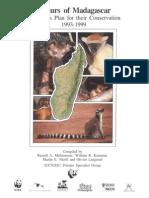 LEmurs de Madagascar