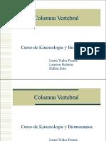 Columna Hernia