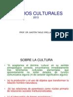 Estudios Culturales 2013 01