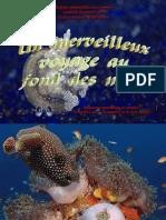 Au Fond Des Mers