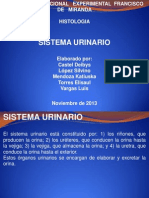 sistema uriario ppt.pptx