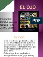 Exposicion del OJO.pptx