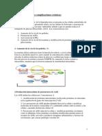 3 Fisiopatologia Complic Cr