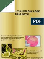 Prueba LIA (Lysine Iron Agar ó Agar
