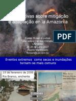 foster brown brasil peru bolivia