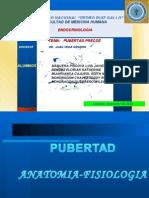 SEMINARIO PUBERTAD PRECOZ