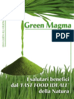 Green Magma Salutebio