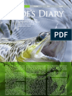 Guides Diary June