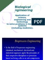 Bio Process Engg