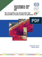 Vision Panoramica Del Sector Cooperativo en Guatemala