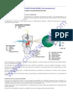 Dpf_filtro Particulas Diesel